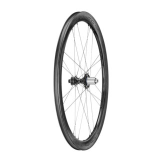 Campagnolo Bora WTO 45 Disc Dark Label Rear Wheel Campagnolo